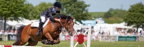 cheval l'équitation le merchandising